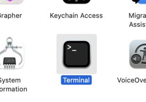 Open the Terminal app